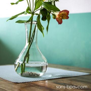 Perles de céramique purifiantes pour vase (15)
