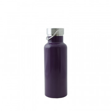 Bouteille isotherme 500 ml - Prune